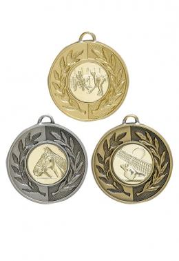medal s1