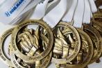 medal odlewany -nordic walking II